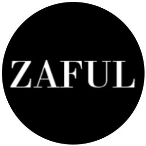 معلومات عن موقع زافول